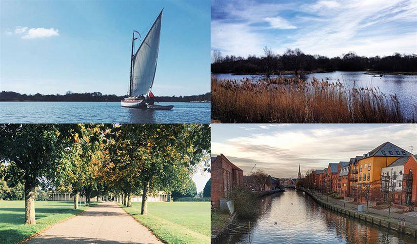 Norfolk Instagram