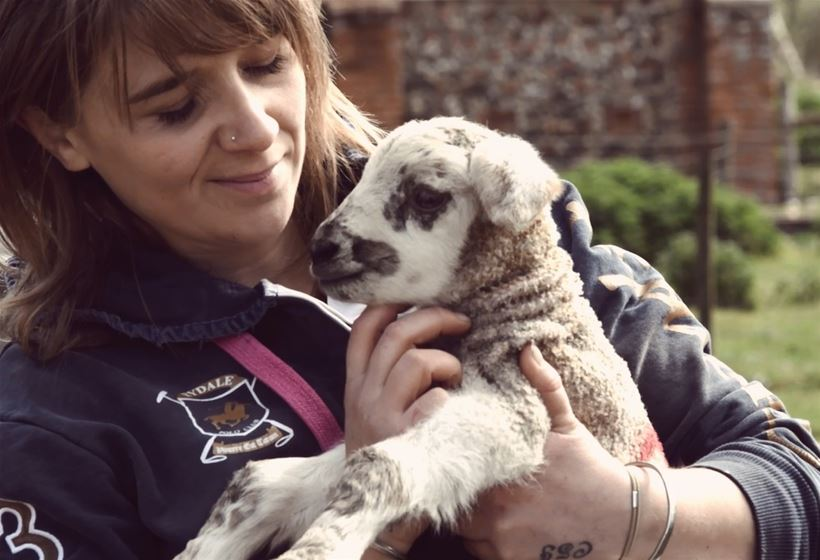 Royal Norfolk Show Stories - lady holding lamb